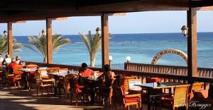 Calimera Habiba Beach Marsa Alam Ägypten terrasse IMG_0386