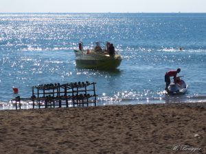 Urlaub Türkei Belek Megasaray Mega Saray  IMG_9345