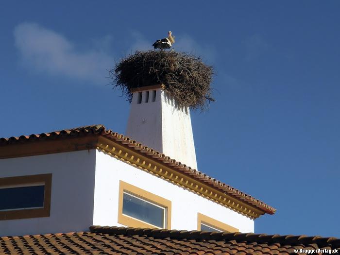 """Storchennest auf einem Kamin des Hotels """"Vila Galé Clube de Campo"""", ca. 30 km südwestlich von Beja, Portugal"""