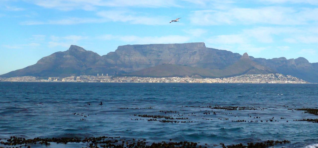 Kapstadt: Tafelberg Copyright Evelin Chudak