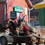 Unterwegs in Rumänien. Teil 3: Von Sibiu nach Sighisoara (Schässburg)
