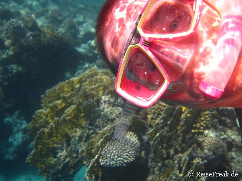 Selfie: Schnorcheln im Roten Meer/Ägypten
