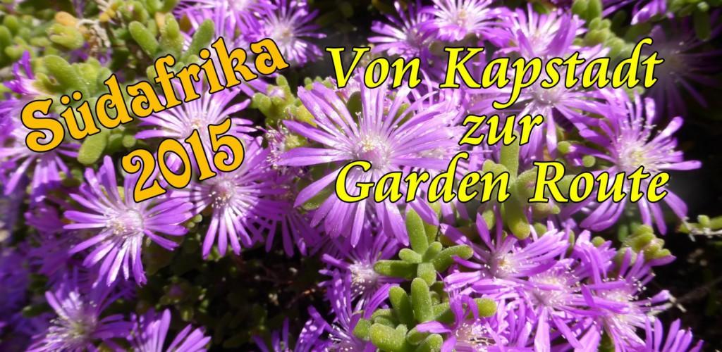 Südafrika 2015: Von Kapstadt zur Garden Route