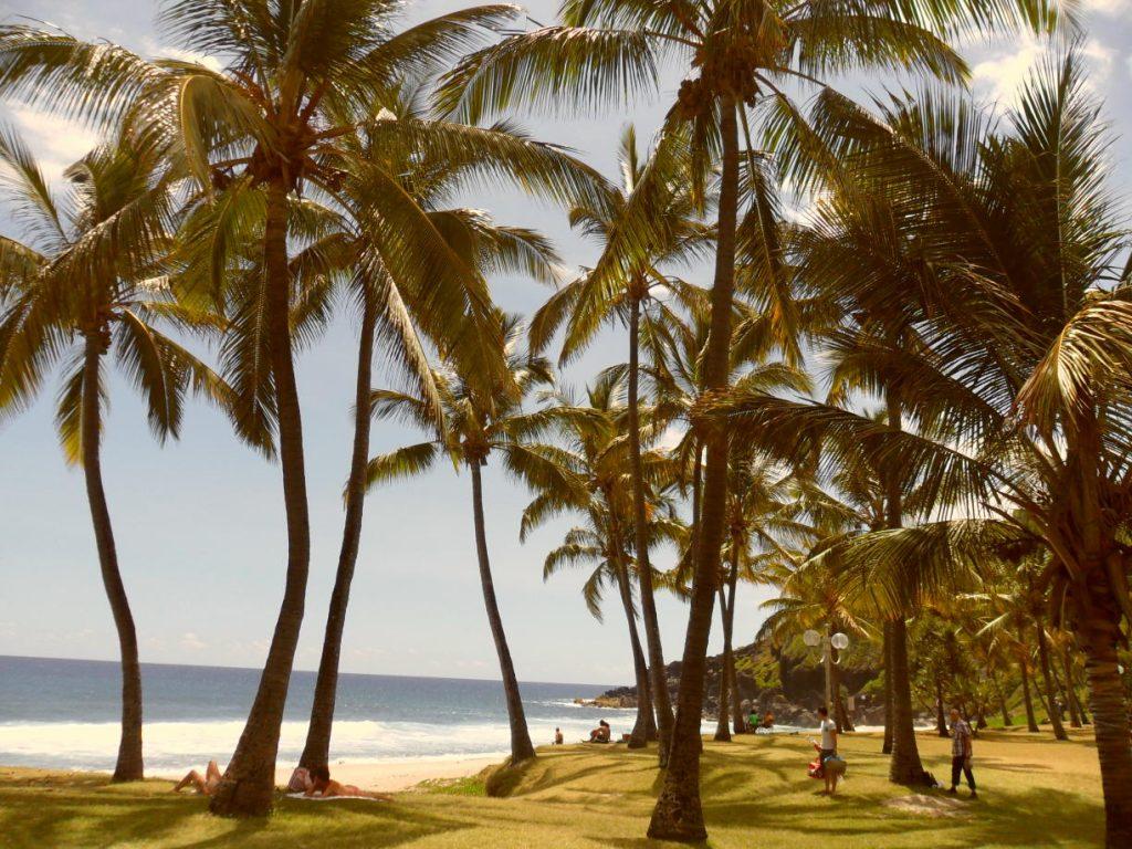 """Bucht von Grande Anse - Réunion. Copyright Manuela vom Blog """"Inseln zum Träumen"""" http://inseln-zum-traeumen.de/"""