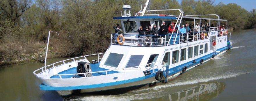 Bootsfahrt im Donaudelta bei Tulcea, Rumänien