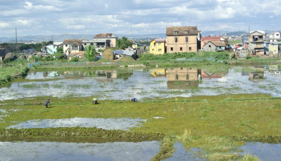 Urlaubsziel Madagaskar: Auf seine Weise schön