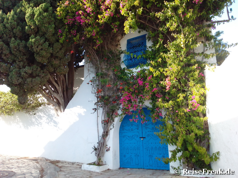Tunesien: Tore, Türen und Portale. Hauptsache bunt