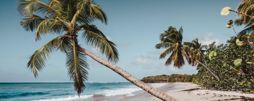 Martinique. Photo by Daniel Hjalmarsson