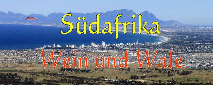 Titelbild Wein und Wale Südafrika